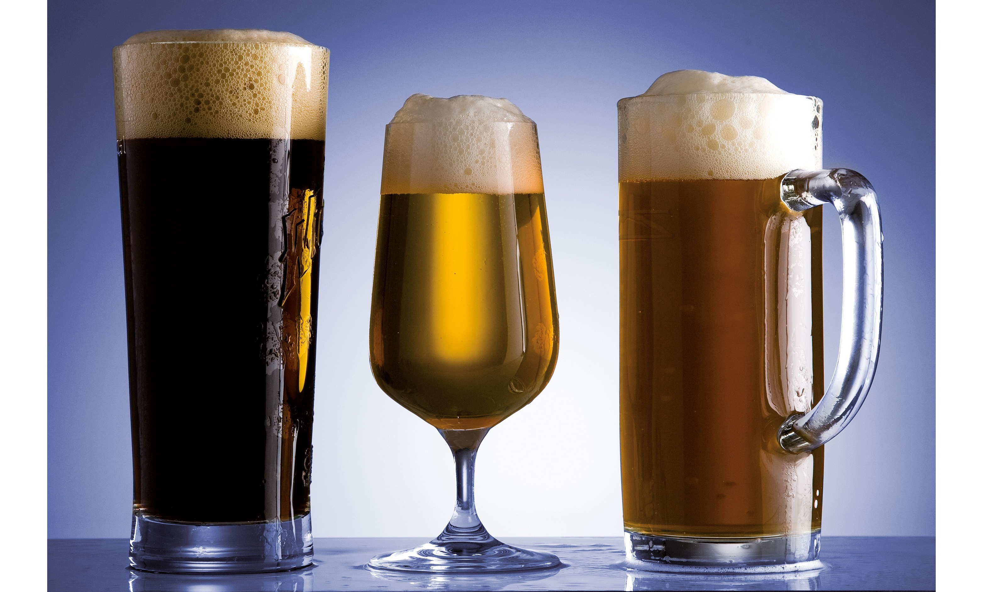 determination of ethanol in beer by gas chromatography