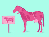 Horsemeat scandal - food fraud