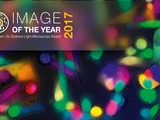 Olympus Image of the Year Competition