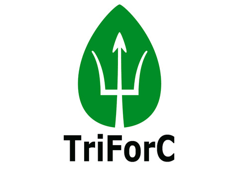 The TriForC project has resulted in the publication of the most extensive and significant algal strain engineering study to date*.