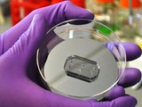 Organ-on-a-chip technology